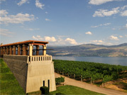 Grape Escape - Okanagan Wine Tour