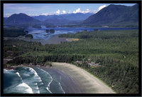 Pacific Sands Beach Resort, Tofino