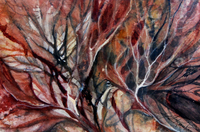 Windswept Studio, Gail Rankin, Quadra Island