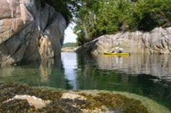The Broughton Archipelago and Johnstone Strait Kayak Tour