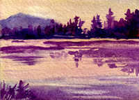 Dianne's on-line Gallery, Dianne Devereux, Comox Valley