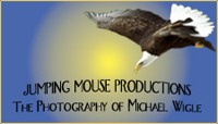 Jumping Mouse Productions, Michael Wigle, Bella Coola