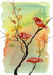 Oladesign, Olga Cuttell, Port Coquitlam